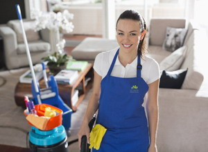 Domestic cleaning services